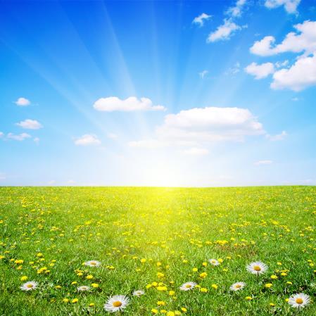 El sol viene de primavera